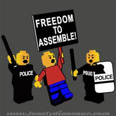 freedom to assemble(1)