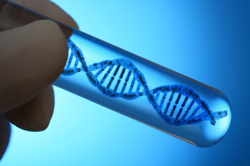 DNA diet could help you fit into yourjeans